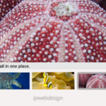 slideViewerPro: Altra Galleria in jQuery