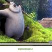 Compatibilità Video su Diversi Browsers: Come Adattare il Nuovo Standard HTML5