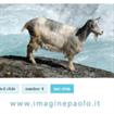 Sudo Slider: jQuery Plugin per lo Slide e il Fade di elementi HTML