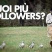 Come avere più Followers? Azioni necessarie…