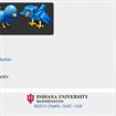 """Bot Or Not? L'applicazione per """"sputtanare"""" account fasulli di Twitter."""