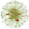 """Chi seguire sui social? Come trovare il giusto """"influencer""""."""